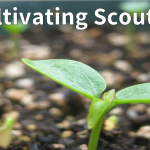 Cultivating Scouting