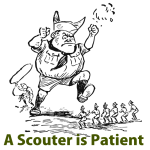 A Scouter is Patient