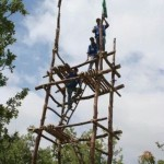 Height of Pioneering Structures