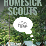Working With Homesick Scouts