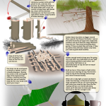 How to Make a Fire in the Rain