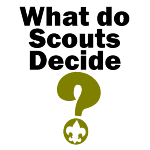 What Do Scouts Decide?