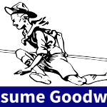 Assume Goodwill