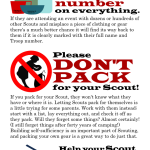 Three Things Scout Parents Can Do
