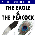 Scoutmaster's Minute – Eagle & Peacock