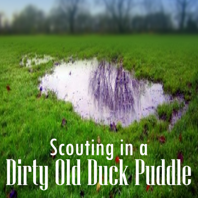 duckpuddle