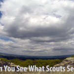 Can You See What Scouts See?