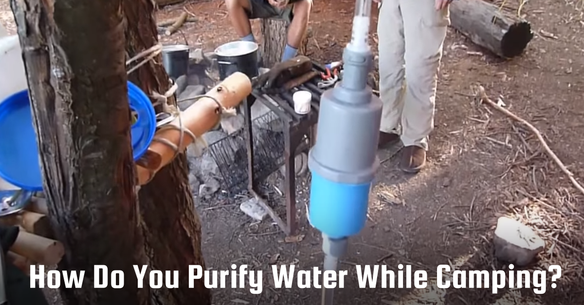 purify water