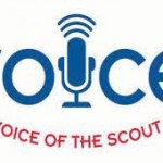 Explaining the Voice of the Scout