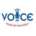 Fall 2013 Voice of the Scout Survey Results