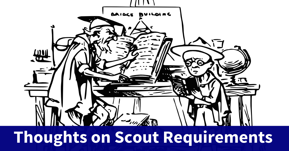 scout requirements