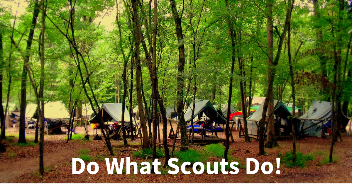 do what scouts do