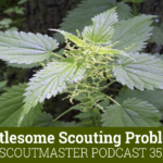 Scoutmaster Podcast 351 Nettlesome Scouting Problems